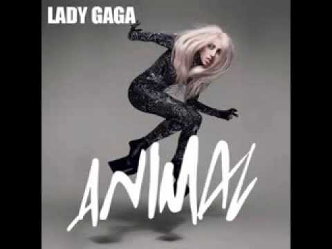 Lady Gaga - Animal (Audio)